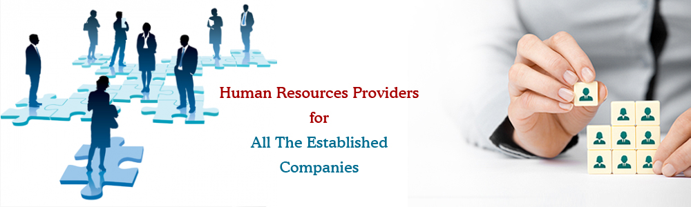 outsourcing hr assignment instructions Human resource management assignment help introduction human resource management (hrm) is the function within a business that concentrates on the employment, management and providing instructions for people who run in an organization.